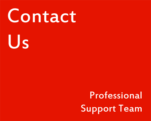 Contact Us - Professional Support Team